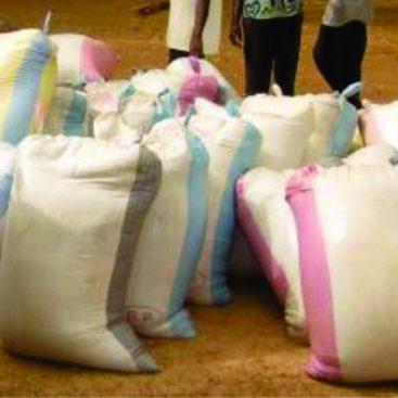 Burkina Faso Famine Relief